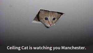 Ceiling Cat is watching you Manchester